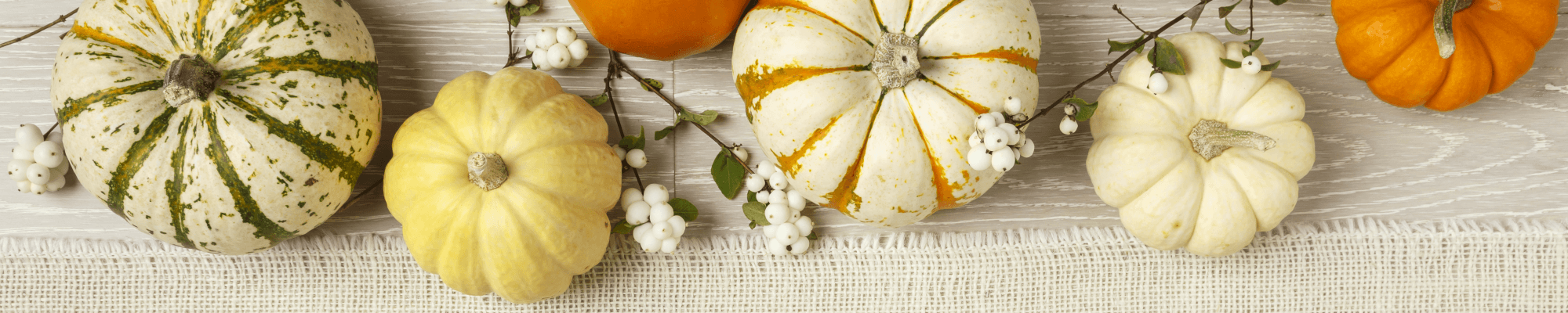 Holiday Catering Menu Fall Header Image (different colored mini pumpkins on wood)